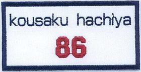 ワッペン5-250